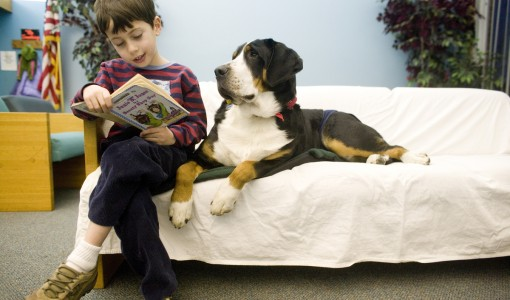 When reading goes to the dogs