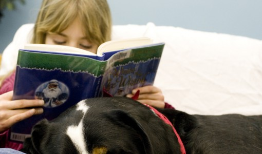 Paws to Read gives youngsters no pause