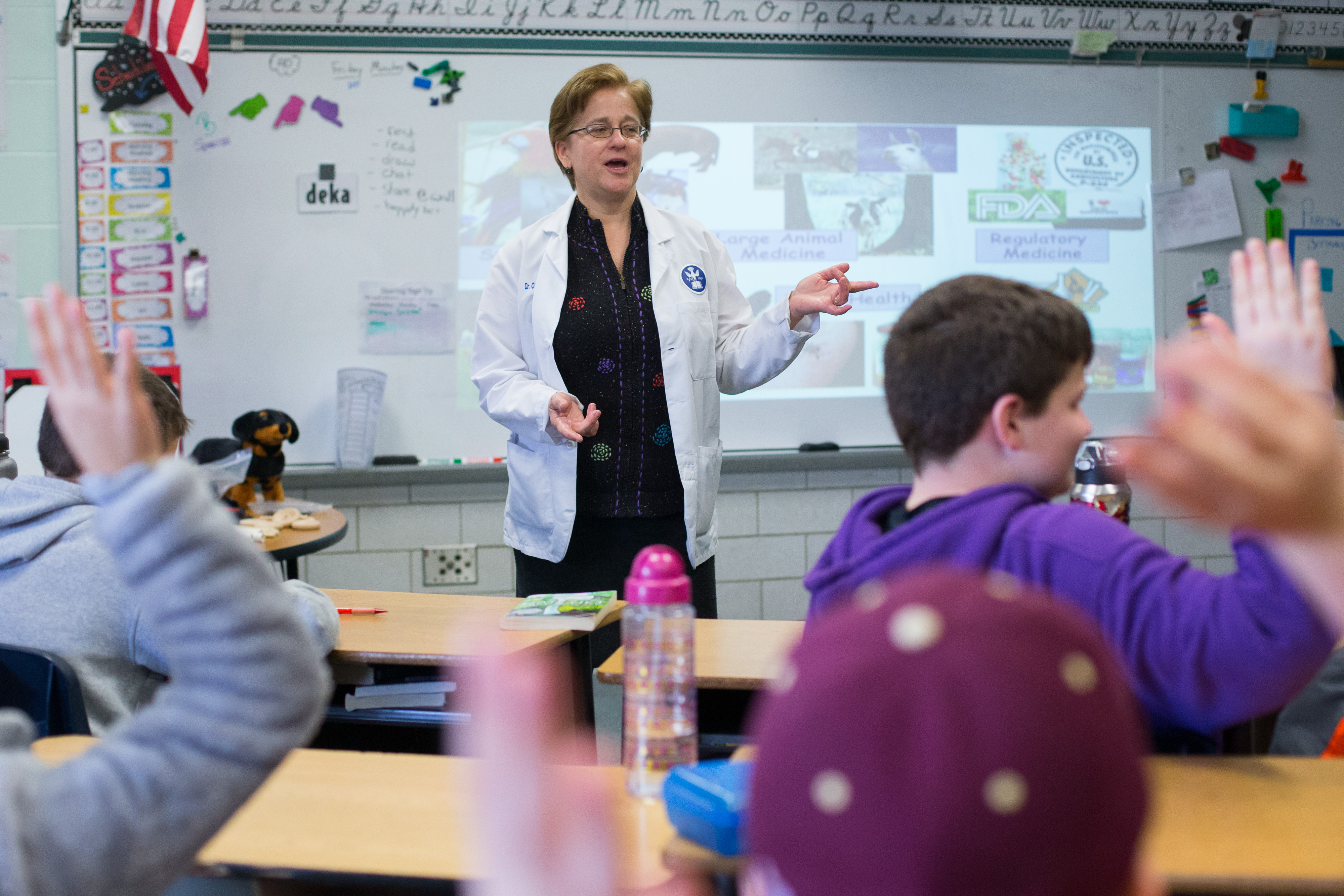 Cummings School Associate Chair for Research, Dr. Cyndie Webster, talks to students about veterinary medicine and sets up the problem they'll need to solve.