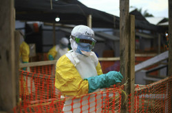 Image for Battling Ebola in Congo