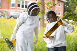 Jillian Nolan, V22, left, and Alisha Gruntman, assistant professor of clinical sciences, looking at the beehives behind the administrative building at Cummings School.