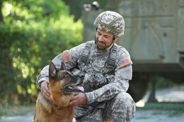 A US Army soldier kneeling next to a military working dog