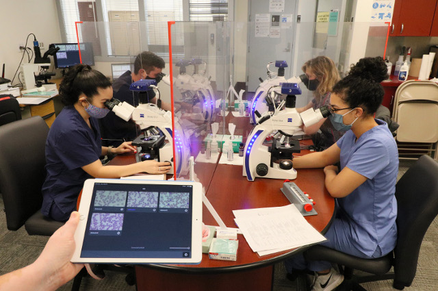 students in pathology lab using state of the art microscopes