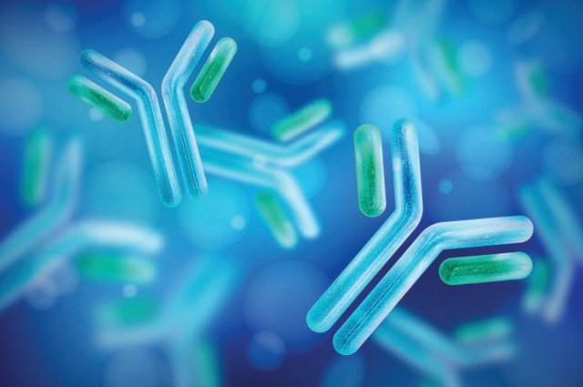 Image for Harnessing Antibodies as Pathogen Hunters