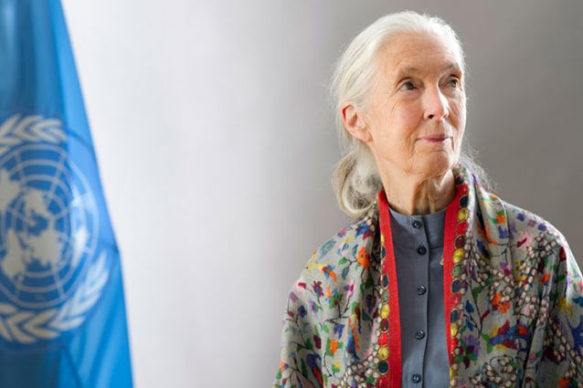 Image for Jane Goodall: Act Locally to Tackle Global Environmental Challenges