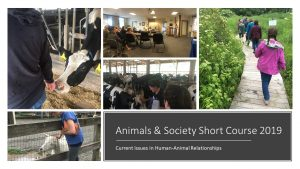 Animals & Society Short Course 2019