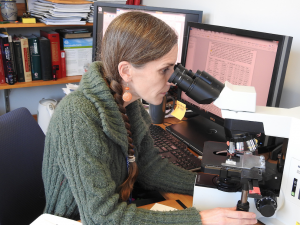 Fascinated by the work of a mentor, Dr. Gillian Beamer decided to become a pathologist in high school.