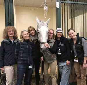 Drs. Daniela Bedenice, Melissa Mazan, and other members of the Tufts Equine Center that cared for Conan, the argentinian warmblood horse