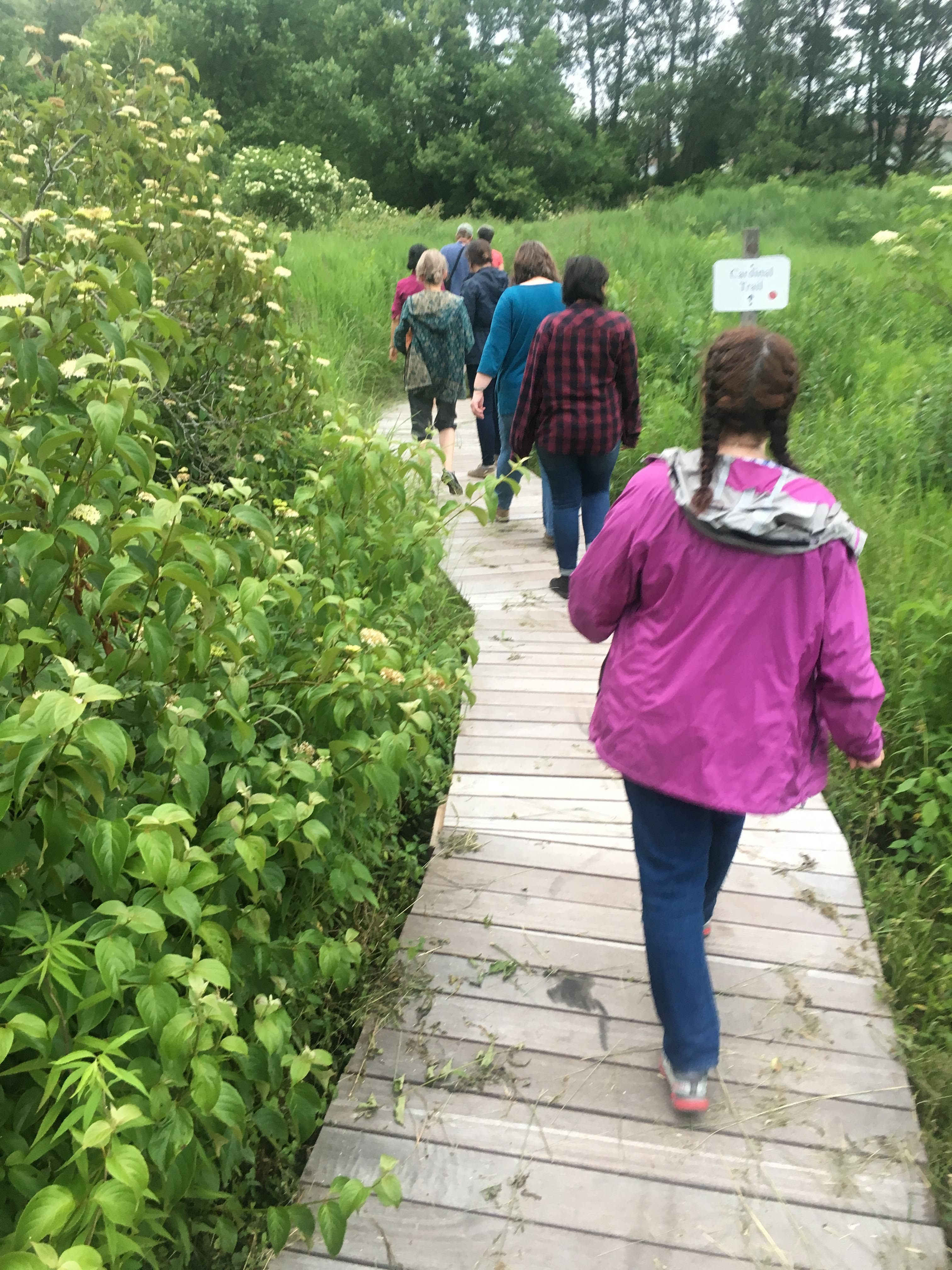Summer Short Course: Animals and Society 2018 - Broad Meadow Brook Conservation Center and Wildlife Sanctuary in Worcester, MA