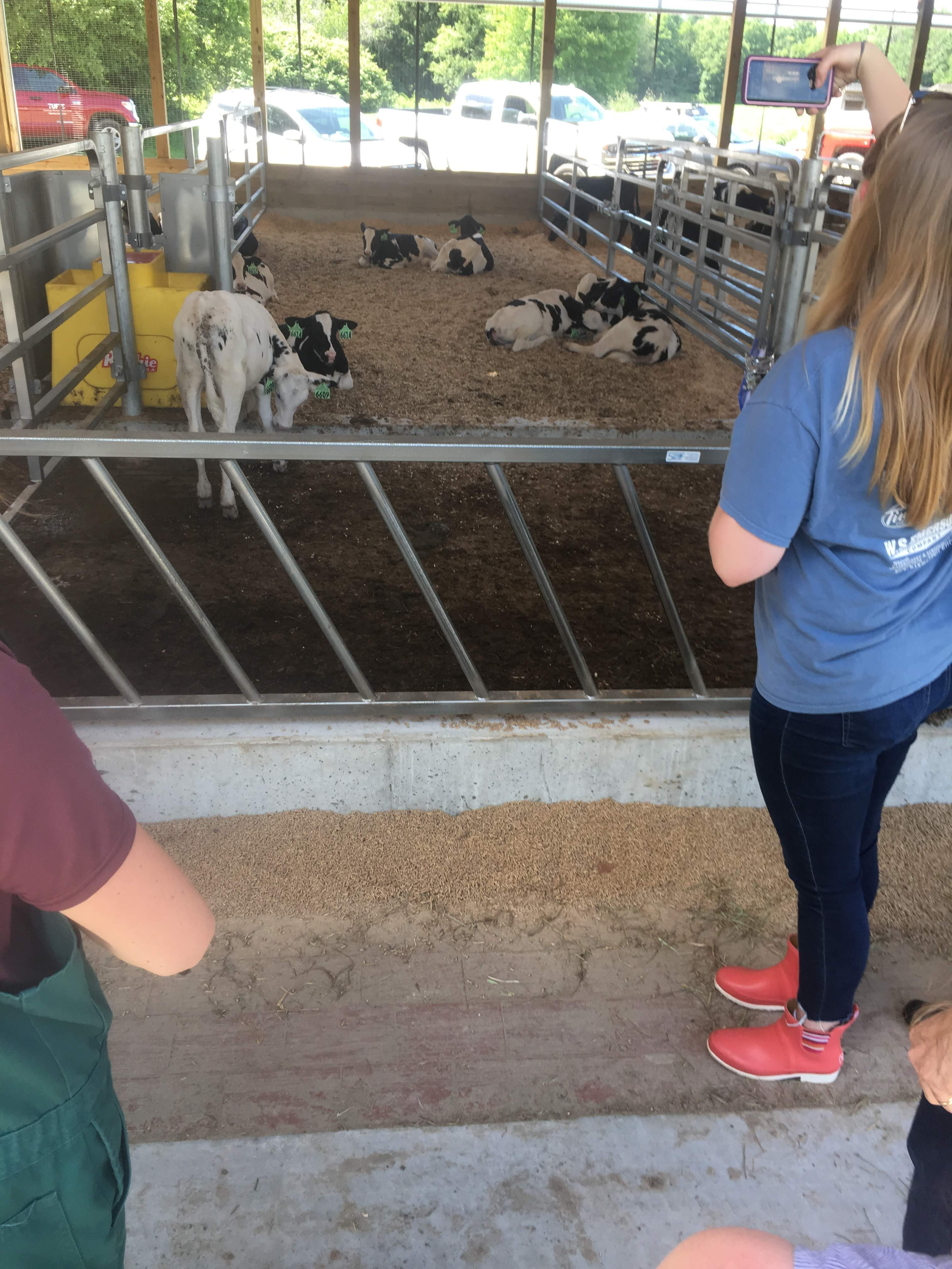 Farm Visit: Tour and Mock Welfare Assessment with Drs. Lindsay Philips and Erin King.