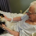 Langley_therapy_dog-a8629fe7