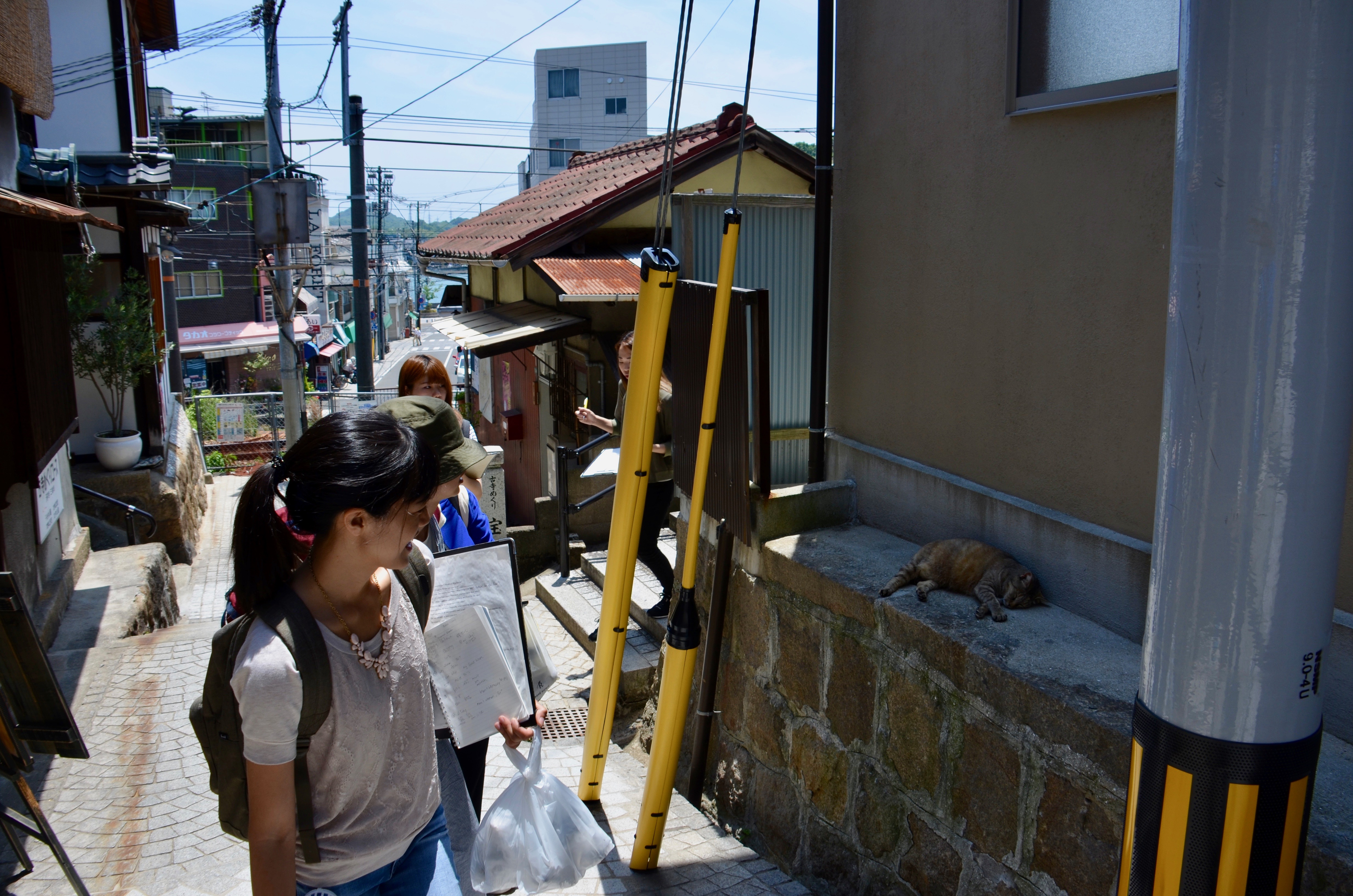Stephany Ota, MAPP class 2017, viewing a cat with some students from Hiroshima University.