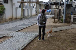 Ota_Stephany -with a cat at one of the temples in Onomichi with a high population of free roaming cats