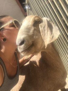 ParkerColleen VG18 with goat at Farm Santuary in CA