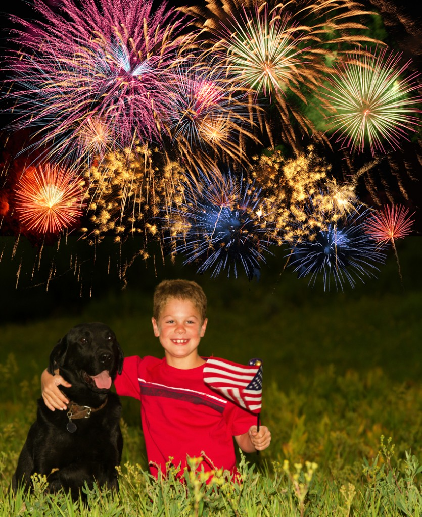 A boy holding a small U.S. flag poses with a black dog as fireworks explode in the background.