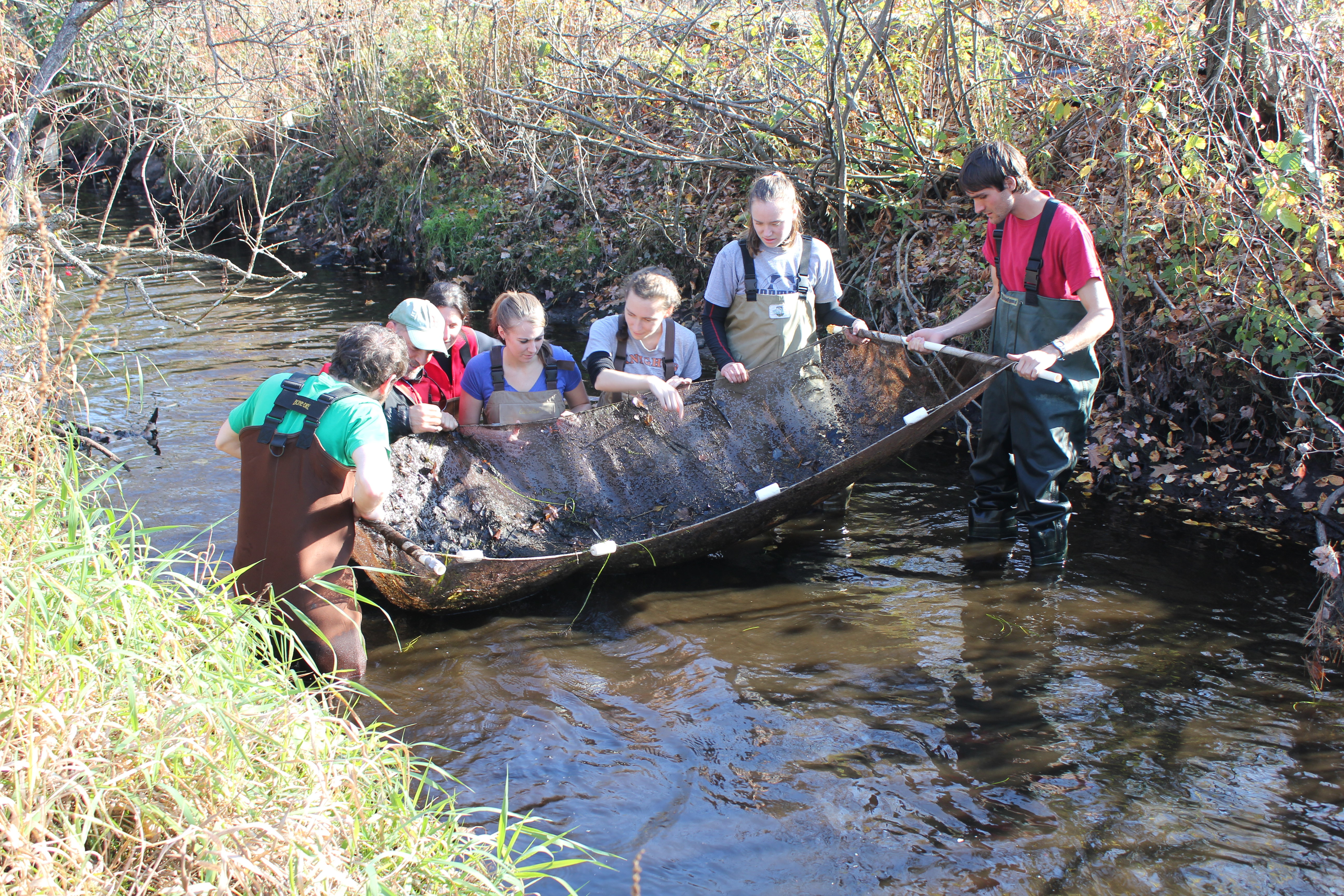 Informational Webinar – Master of Science in Conservation Medicine Program Monday, February 22, 2016 at Noon