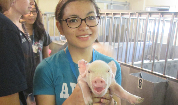 High School Senior Takes a Step Toward Realizing Her Dream of Becoming a Veterinary Surgeon