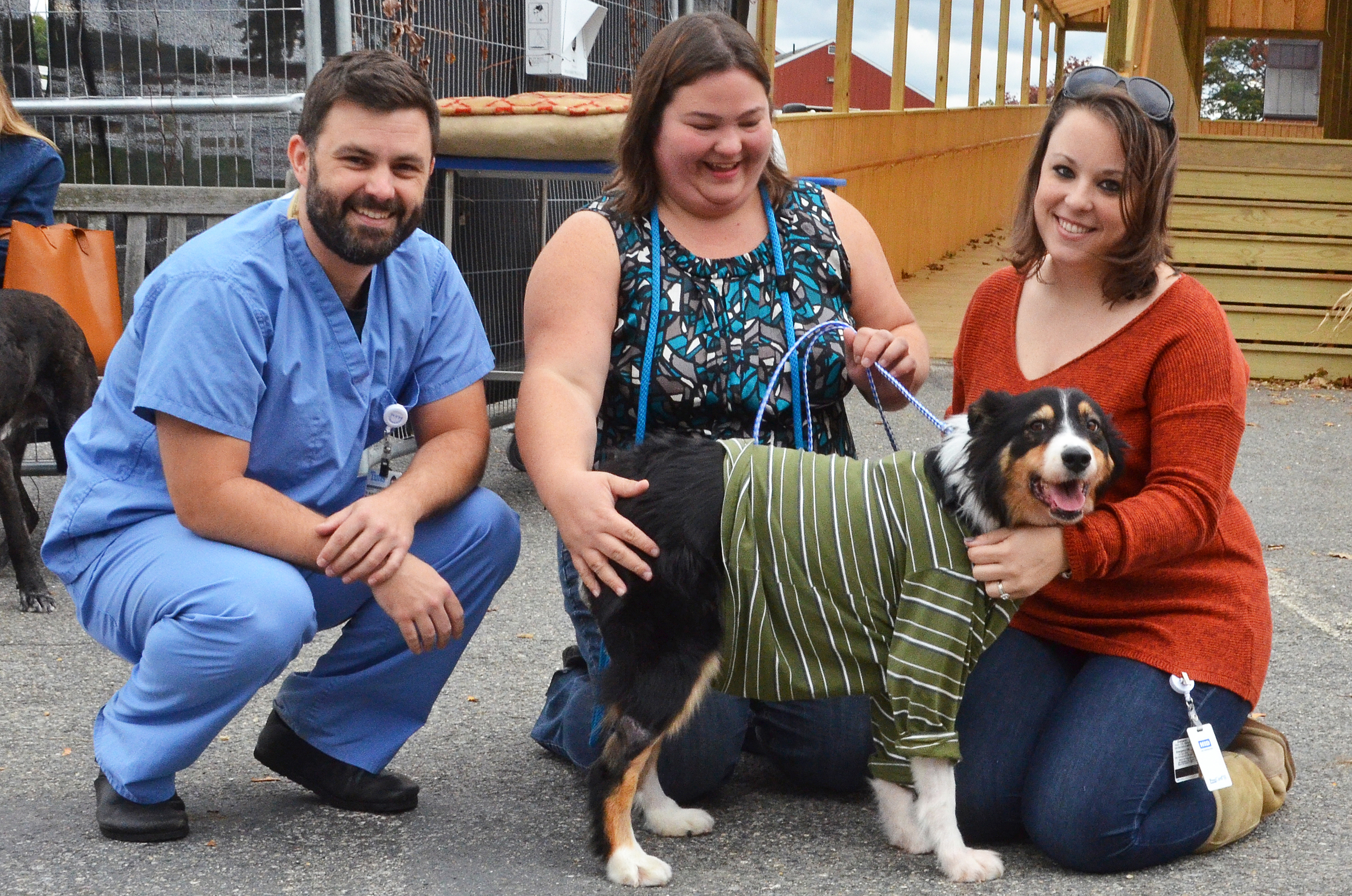 Dog's Recovery at Tufts Highlights Need for Genetic Testing, Owner Vigilance