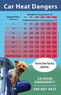 Car Heat Dangers Poster