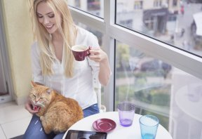 © Vesnaandjic/Getty Images A little time with a cup of tea and a friendly cat is a good way for people to unwind — especially those who aren't able to live with pets in their homes.