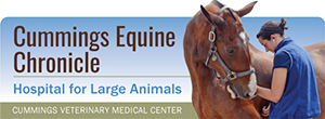 Cummings Equine Chronicle HEader