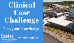 Clincal Case Challenge: Test Your Knowledge!