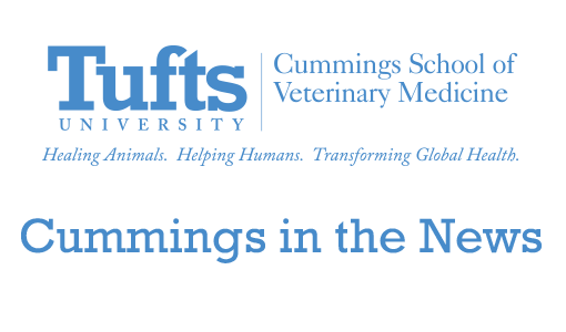At Tufts graduation, Cummings veterinarians say reward is helping animals and people