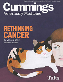 Cummings Veterinary Magazine