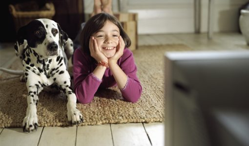 Do Your Dogs Love Watching Television? Here's What Science Has to Say