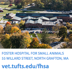 Foster Hospital for Small Animals at Tufts