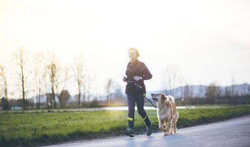 Dear Doctor – Fears that the Dog isn't Drinking Enough Water