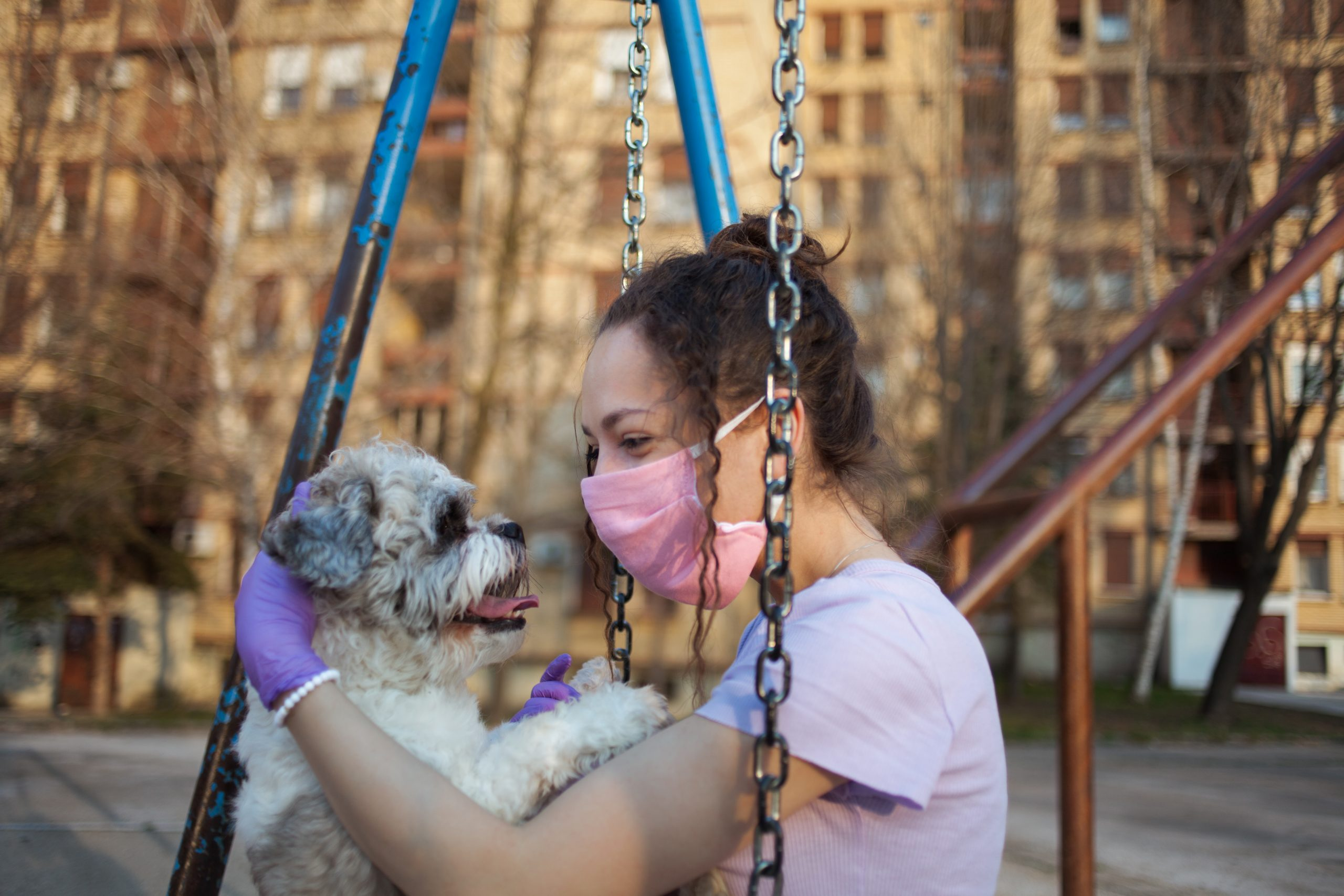 Girl playing with her dog on the playground stock photo