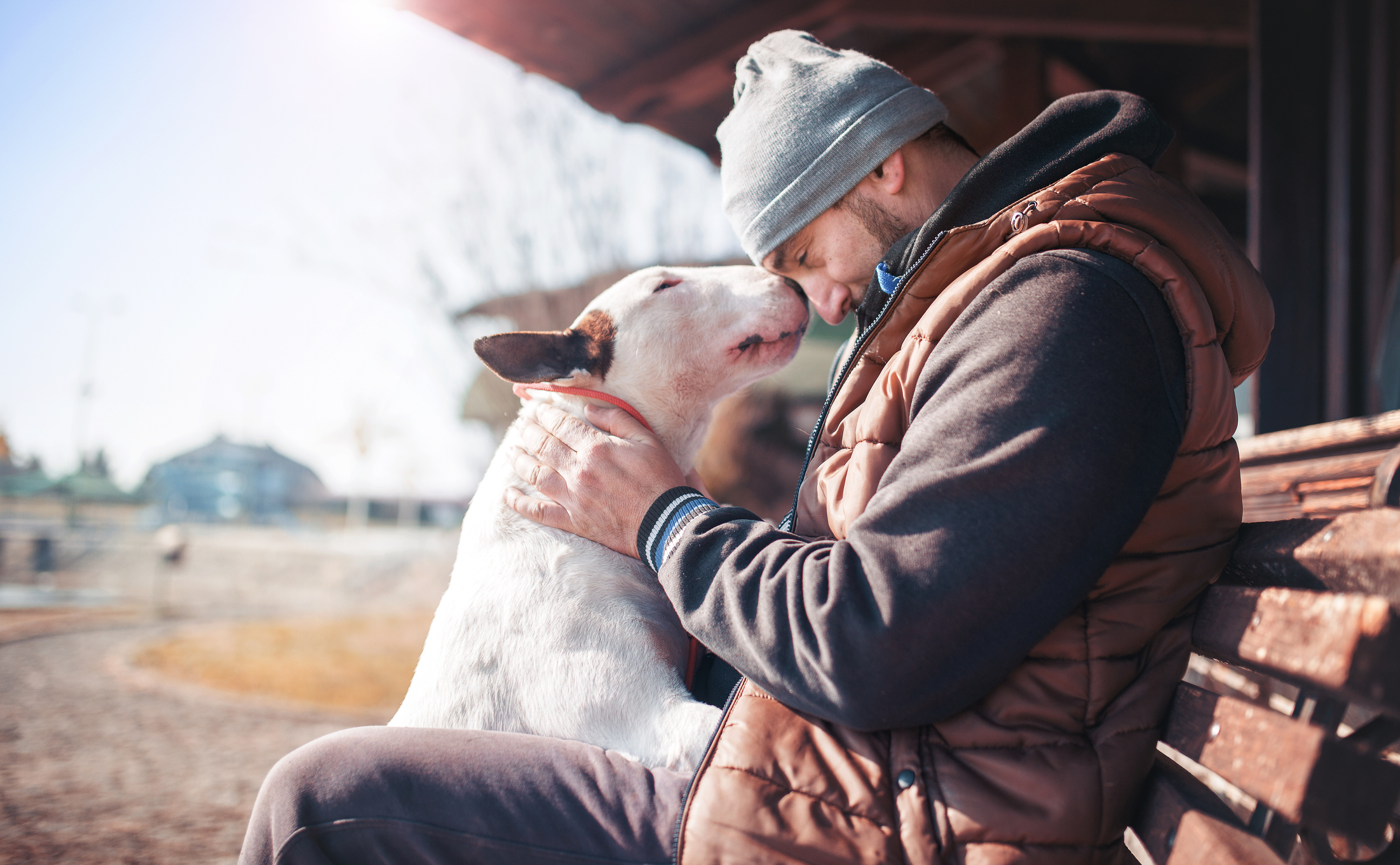 man sitting on a bench outdoors with his dog leaning up to lick his face