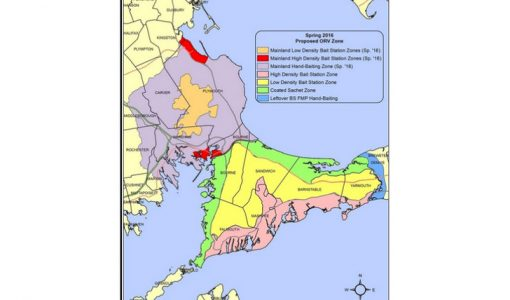 Rabies vaccination zone to be set up in south Plymouth County