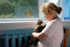 Pets Even Allowed in Some Hospitals and Hospice