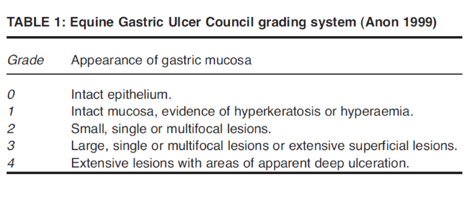 ulcer scale table