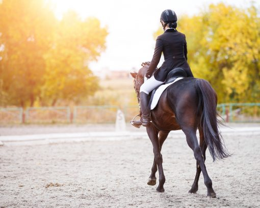Setting attainable goals before forming a conditioning program will help keep you and your horse happy and healthy throughout the process.