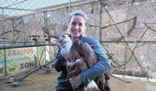 Putting the Passion in Compassionate Conservation